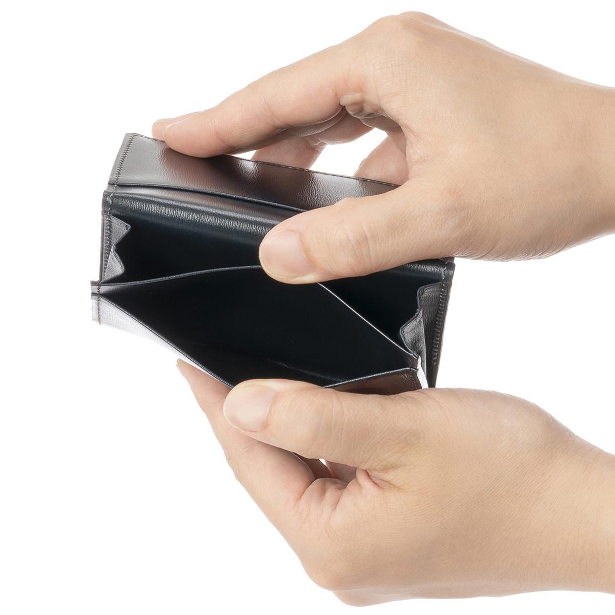 カヴァレオ バルアのカードポケット