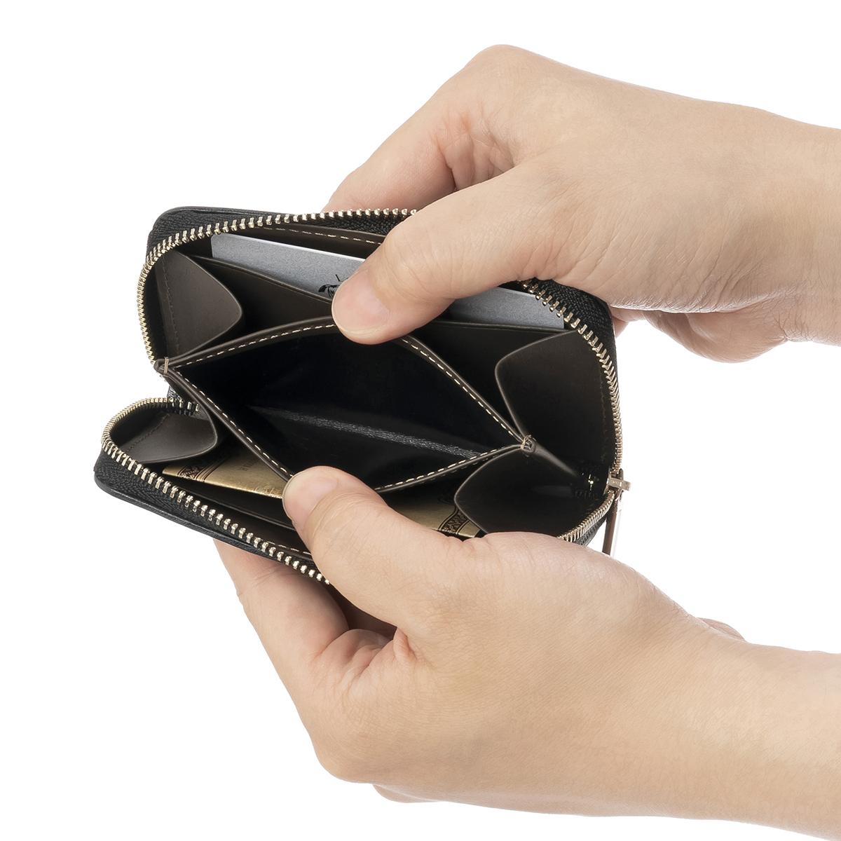 ポンテマットーネ・シレークスのコインポケット2